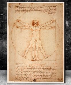 The Vitruvian Man by Leonardo da Vinci Drawing Art Paintings Print On Canvas Posters And Prints Famous Art Pictures Home Decor
