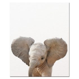 Baby Animal Wall Art Pictures for Kids Bedroom Decoration - Printed on Canvas
