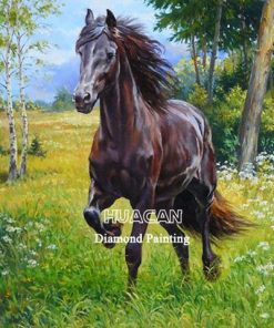 HUACAN 5d Diamond Painting Full Drill Square Horse Mosaic Animal Handmade Gift Embroidery Farmhouse Home Decor