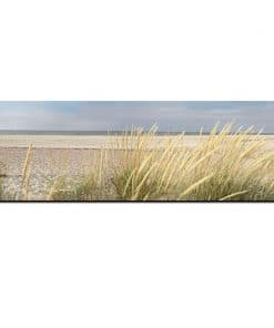 Peaceful Seascape with Grass around the Beach, Modern Art Printed on Canvas